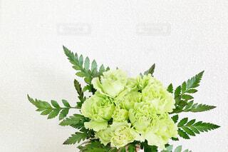 花束の写真・画像素材[4430706]