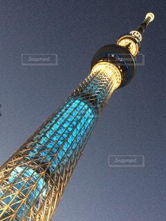 夜の東京スカイツリーの写真・画像素材[1699020]