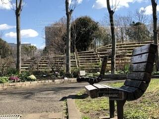 公園のベンチの写真・画像素材[1832457]