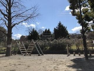公園のアスレチックの写真・画像素材[1832495]