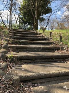 公園の階段の写真・画像素材[1832510]