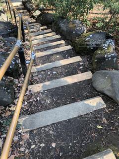 公園の階段の写真・画像素材[1832590]