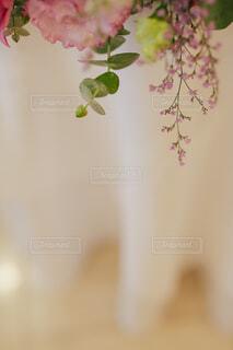 近くの花のアップの写真・画像素材[1699073]