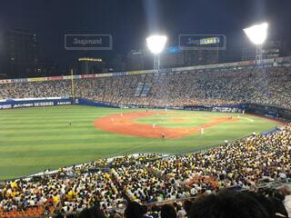 横浜スタジアムの写真・画像素材[1700564]