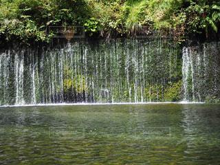 白糸の滝の写真・画像素材[1702080]