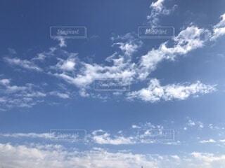 あつまれ雲の森の写真・画像素材[4068275]