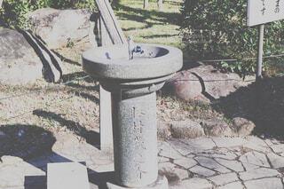 蛇口の写真・画像素材[1733667]