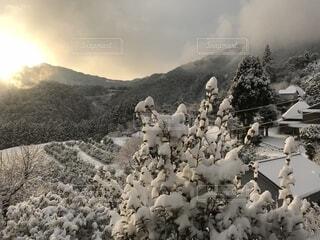 冬の農村の朝の写真・画像素材[1703051]