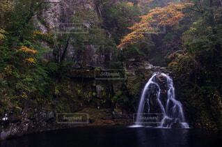 森の中の大きな滝の写真・画像素材[1747298]