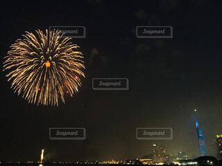 福岡タワーと花火の写真・画像素材[1712801]