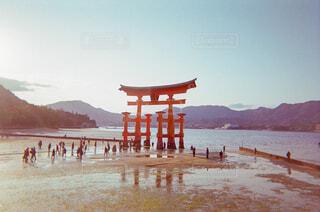 厳島神社の大鳥居の写真・画像素材[1782442]