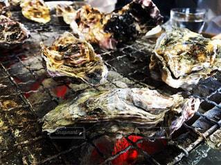 新鮮な牡蠣を焼きで!の写真・画像素材[1705262]