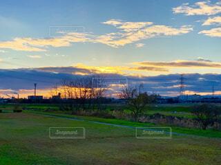 雄大な夕暮れ空と生い茂る草原の散歩道の写真・画像素材[1727806]