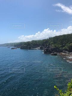 城ヶ崎海岸からの風景の写真・画像素材[1705299]