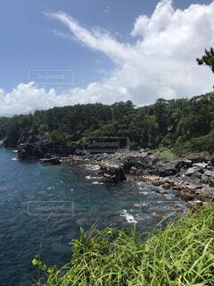 城ヶ崎海岸からの風景の写真・画像素材[1705300]