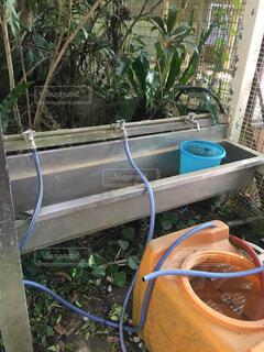 屋外の作業用の水道!の写真・画像素材[2477795]