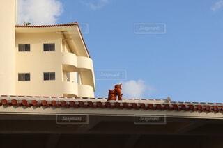 アンサ沖縄リゾートの赤瓦の屋根の上のシーサーの写真・画像素材[3853474]