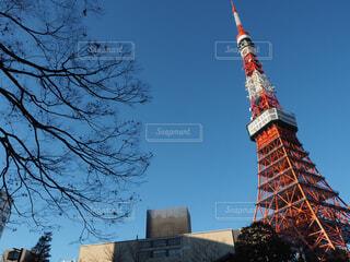 東京タワーと木と綺麗な青空2の写真・画像素材[1705906]
