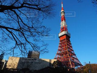 東京タワーと木と綺麗な青空の写真・画像素材[1705907]