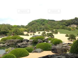 足立美術館の庭園の写真・画像素材[1741557]