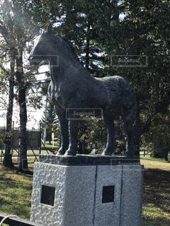 木漏れ日の馬の像の写真・画像素材[1710128]