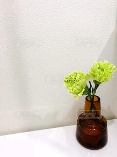 寄り添う花の写真・画像素材[1707588]