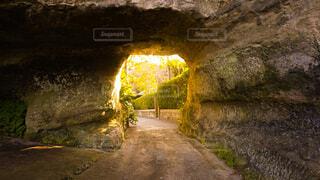 自然のトンネルの写真・画像素材[1710943]