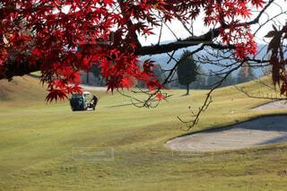秋ゴルフの写真・画像素材[2063751]
