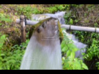 伊吹山にての写真・画像素材[1710571]