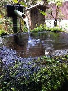 日本庭園の水落としの写真・画像素材[1711635]