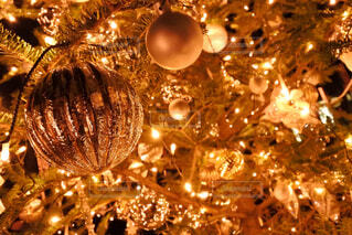 クリスマス ツリーの写真・画像素材[1716674]
