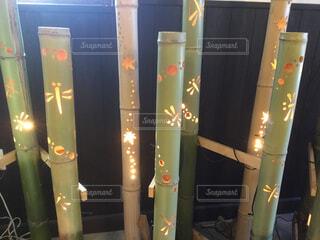 竹の中のトンボの写真・画像素材[1712076]