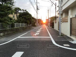 朝日の通り道の写真・画像素材[1716206]