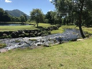 緑豊かな福島の風景の写真・画像素材[1716208]