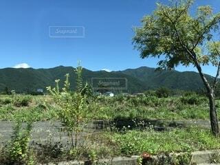 背景の山と木の写真・画像素材[1716209]