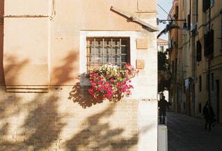 ベネチアの路地と花の写真・画像素材[1714899]