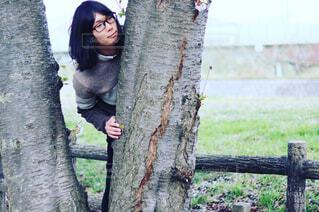 木から覗く - No.1130210