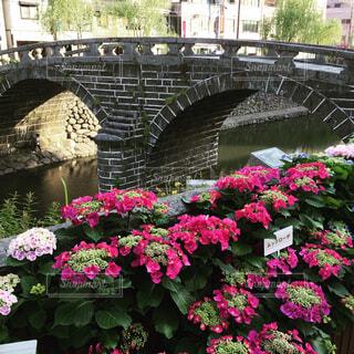 眼鏡橋と紫陽花の写真・画像素材[1715012]
