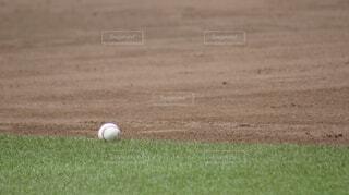 フィールド上のボールを投げて、野球選手の写真・画像素材[1132126]