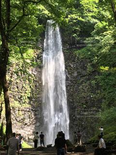 玉簾の滝の写真・画像素材[778152]