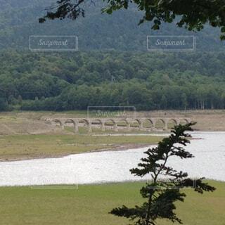 タウシュベツ橋梁の写真・画像素材[782676]
