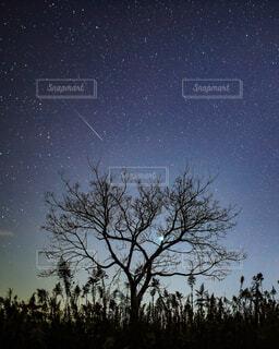 しぶんぎ座流星群の写真・画像素材[1719467]