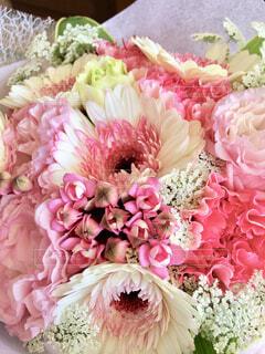 近くの花のアップの写真・画像素材[1726490]