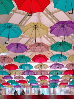 傘の写真・画像素材[1774658]