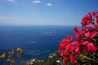海の眺めの写真・画像素材[1783454]