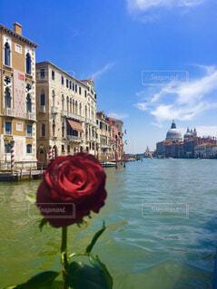 ヴェネツィアの写真・画像素材[1808120]
