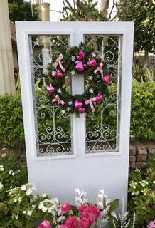 花と扉の写真・画像素材[1836081]