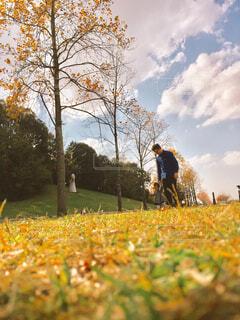 草の覆われてフィールド上に立っている人の写真・画像素材[1718754]