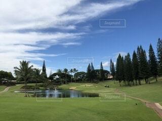 ハワイのゴルフ場の写真・画像素材[1719680]