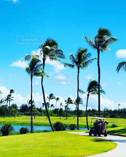ハワイのゴルフ場の写真・画像素材[1719683]